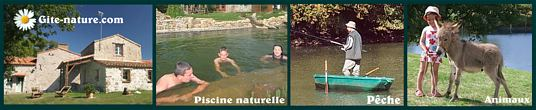 Bernadette Renaud location  gite  piscine  rural